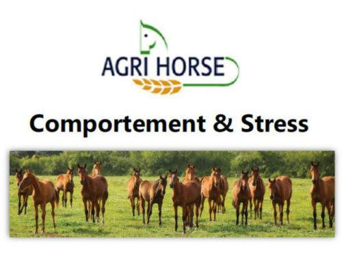 Comportement & Stress