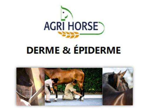 Derme & Épiderme